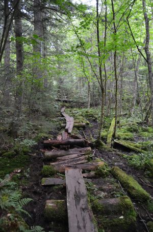 Hiking in the ADKs